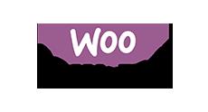 Replicate WooCommerce to MYSQL