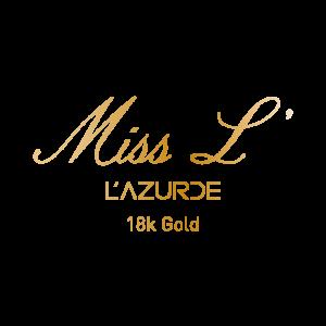 missl-logo